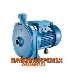 MÁY BƠM DÂN DỤNG PENTAX CM50 0.5HP CỘT ÁP 20M - hàng chính hãng