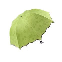 Dù đi mưa nở hoa khi gặp nước