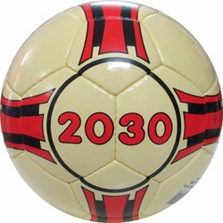 BANH ĐÁ SÂN NHÂN TẠO-2030