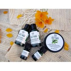 Tinh dầu trị mụn Oil Tea tree 10ml