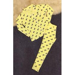 đồ bộ pizama thun tay dài