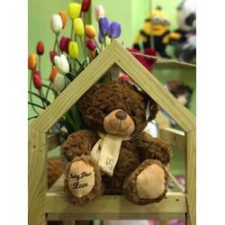 Gấu Teddy đeo khăn - lông mịn đẹp siêu cute