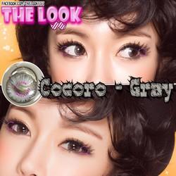 Contact Lens + Khay Gương