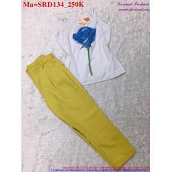 Sét áo hai quai có in hình hoa hồng xanh phối với quần dài SRD134