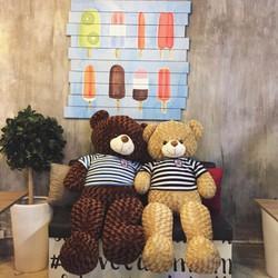 Gấu bông Teddy m2 - Gấu Teddy socola khổ 1m2