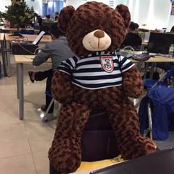 Gấu bông Teddy Nâu Đen khổ 1m