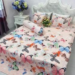Set Drap giường và vỏ gối ôm