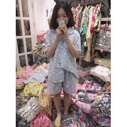 Đồ bộ mặc nhà đồ bộ ngủ Chiba Shop