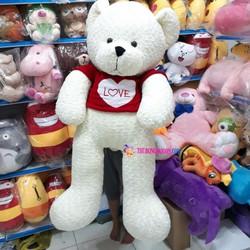 Gấu bông Teddy mặc áo màu trắng size 1,5 mét