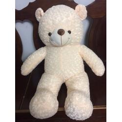 Gấu bông teddy giá rẻ - Gấu 1m2