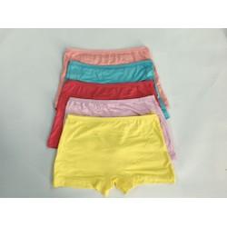 Combo 5 chiếc quần sịp đùi cho bé gái
