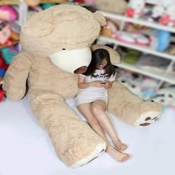 Gấu bông khổng lồ 3.4m Costco