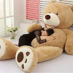 Gấu bông khổng lồ 2.6m Costco