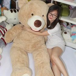 Gấu bông khổng lồ 1m3 Costco