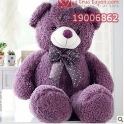 Gấu bông Teddy lông xù tím 80cm