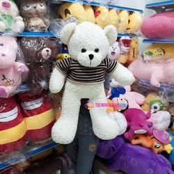 Gấu bông Teddy màu trắng mặc áo size nhồi bông 80 cm