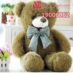Gấu bông Teddy lông xù xanh 80cm