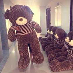 Gấu Bông Teddy Áo Len 2m2 - HÀNG Nhập Khẩu - GB008