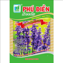 Hạt giống hoa oải hương tím-lavender