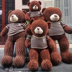 Gấu Bông Teddy Áo Len 1m8 - HÀNG Nhập Khẩu - GB007