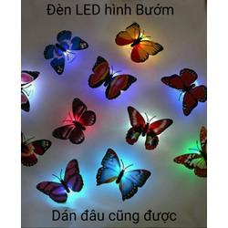Com bo 10 Đèn LED Bướm Đa màu