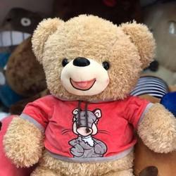 Gấu Bông Teddy Áo Thú 1m4