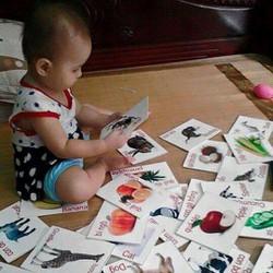 bộ thẻ học cho bé