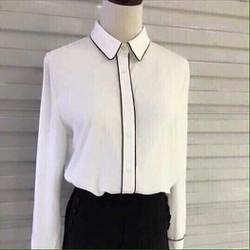 áo sơ mi trắng viền đen
