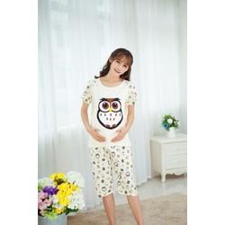Quần áo bầu trước và sau sinh