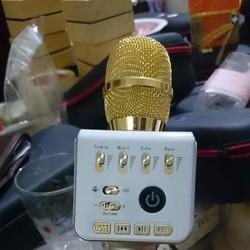 Micro ZP-11 cao cấp chính hãng bảo hành 06 tháng