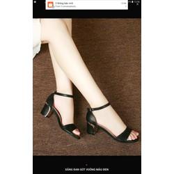 giày gót vàng giá tốt nhất