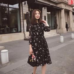 Đầm voan nhún thời trang - LV1453