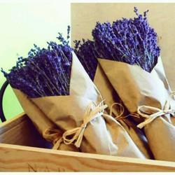 Hoa lavender khô- món quà tặng giáng sinh đầy ý nghĩa