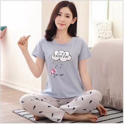 Bộ đồ hè nữ mặc nhà chất cotton co giãn cao cấp - NG8111