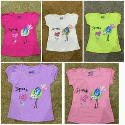 set 5 áo thun cotton 4 chiều in hình chim