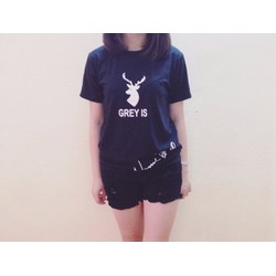 Áo thun T-Shirt