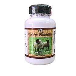 Nhau thai cừu Mỹ NU-HEALTH 100 viên