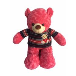 Gấu bông Teddy đẹp size 80cm