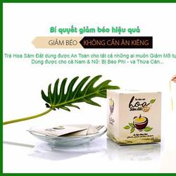 Trà Hoa Sâm Đât - Giảm Mỡ Toàn Thân, Giảm Ngay 2-5kg Trong 15 Ngày
