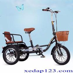 Xe đạp 3 bánh cho người già