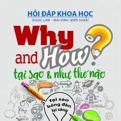 Why and How - Tại sao và như thế nào