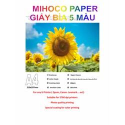 Bìa Thái 5 Màu A4 ĐL 180gsm Trắng, xanh lá, xanh dương, Hồng, Vàng