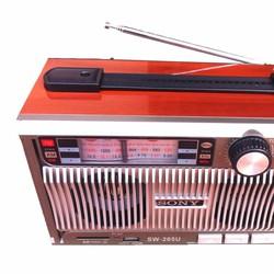 Máy nghe nhạc đa năng SW205U