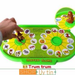 Khỉ nối hình thông minh đồ chơi giáo dục