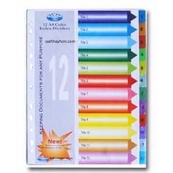 Phân Trang 12  số Nhựa