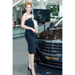 Đầm đen cúp ngực sang trọng 2015