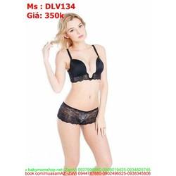 Sét đồ lót nữ áo ngực hình chữ U phong cách DLV134