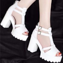 Giày sandal chiến binh quai cài cao cấp Lady-SD781