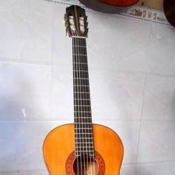 Bán cây guitar classic kiso suzuki No-60