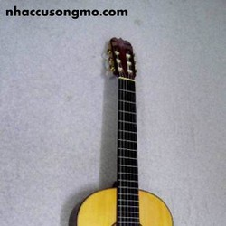 Đàn guitar classic matsuoka M-100